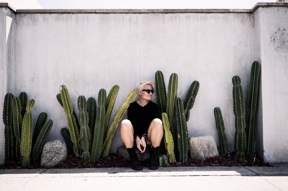 LA-Cactus.jpg