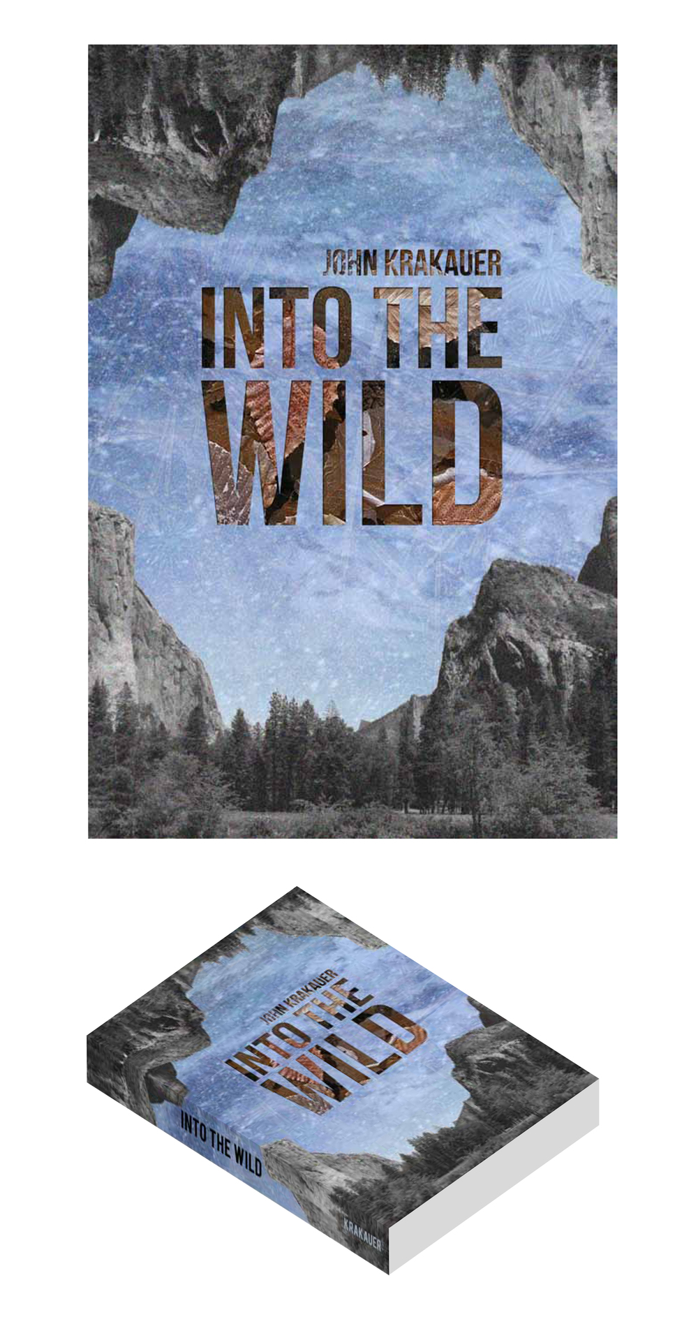 into_the_wild_cover.jpg