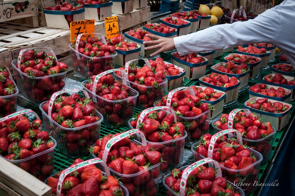 ProvenceForBlissTravelsByAnthonyBianciella-18.jpg