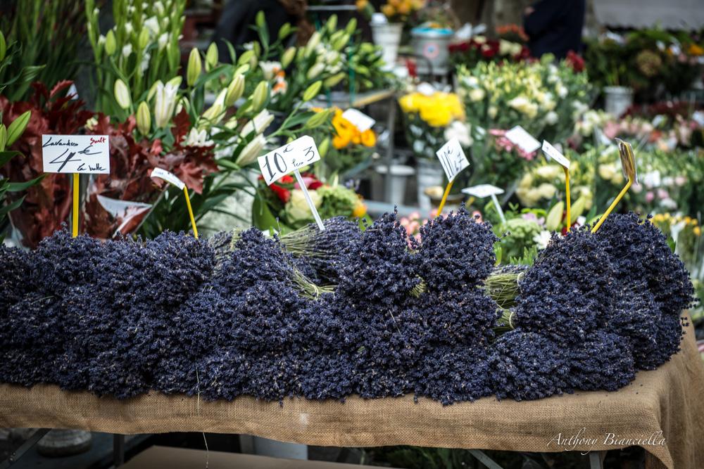 ProvenceForBlissTravelsByAnthonyBianciella-24.jpg
