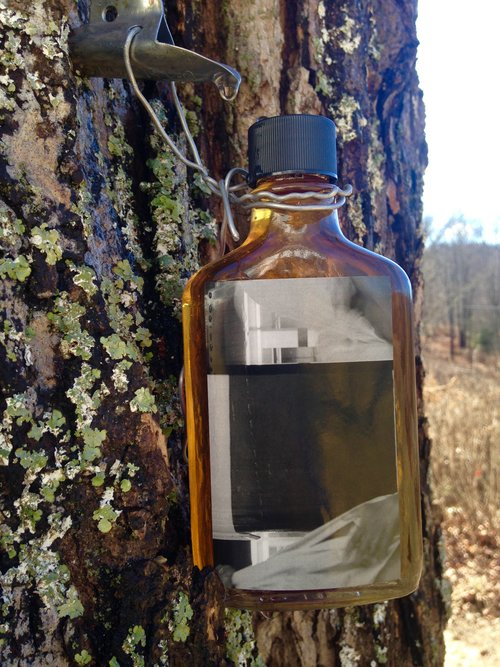 Dave McKenzie - Maple Syrup: Limited edition of 24 bottles of maple syrup harvested from Denniston Hill's maple trees. Dave McKenzie (DH 2016) is a conceptual artist working in performance, photography, and video. It takes approximately 40 gallons of maple sap to make one gallon of maple syrup!