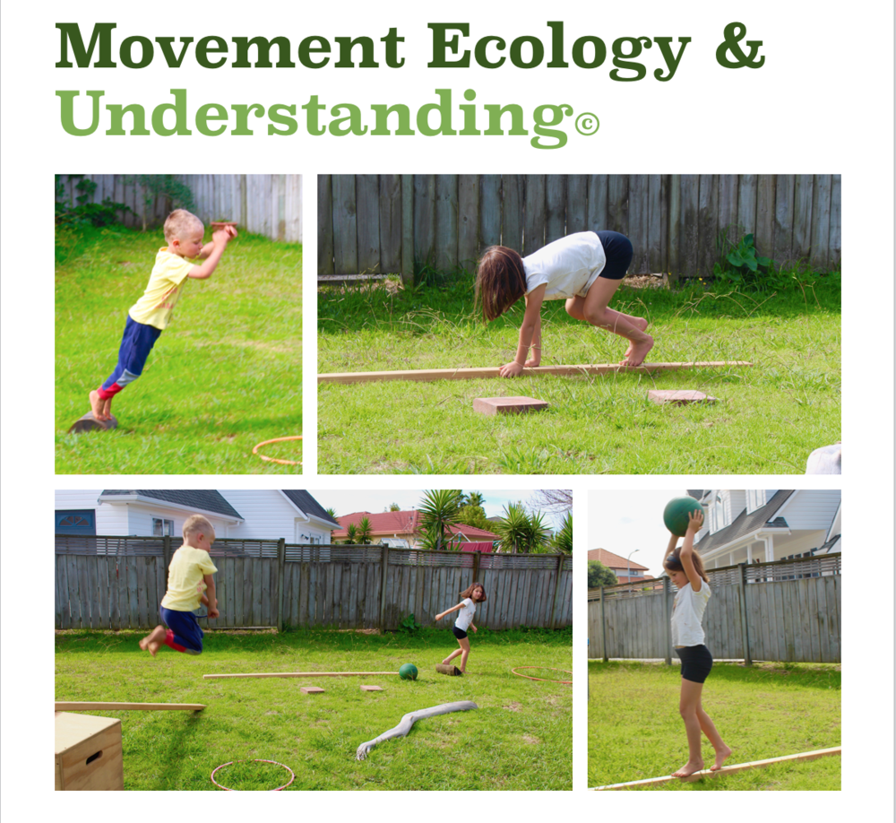 ME & U FOR SCHOOLS - Movement Ecology & Understanding (ME&U) is a platform for structured but explorative play of foundational natural movement outdoors that is suitable for all ages and abilities.