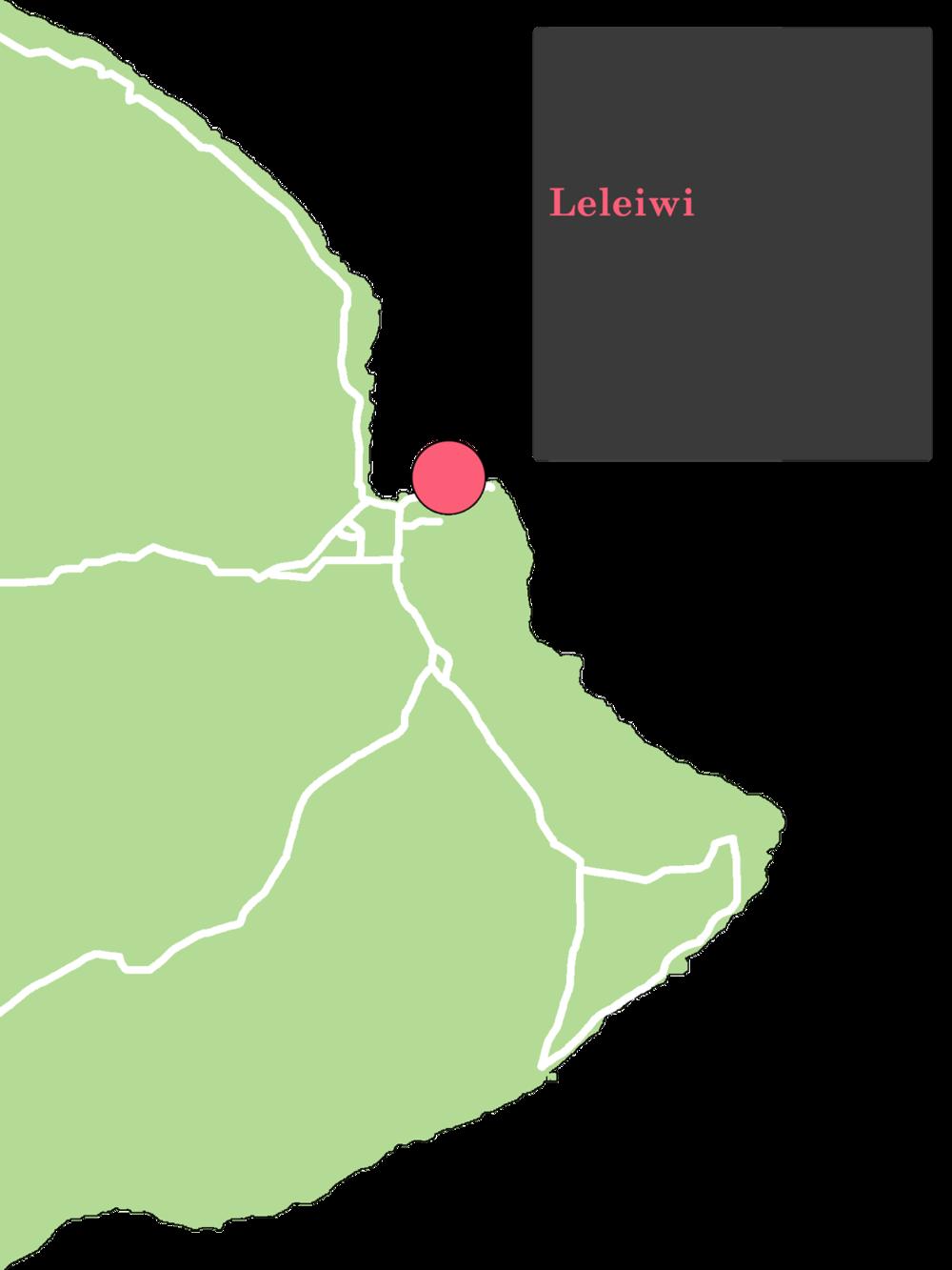 LeleiwiHiloMap.png