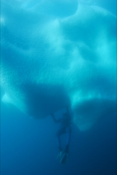 freediving in Antarctica