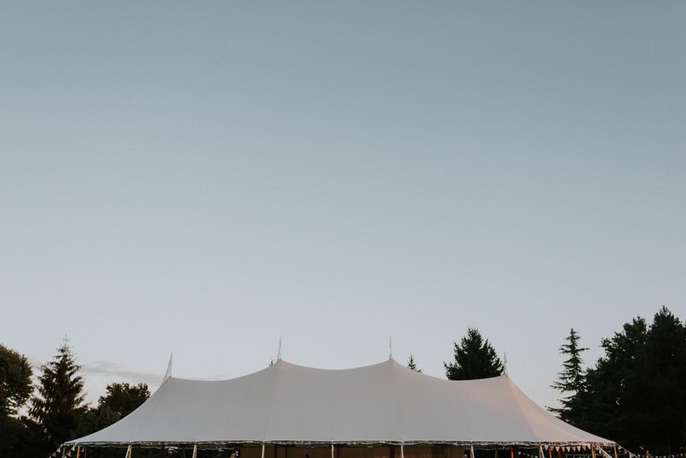 Backyard Wedding Jardin France -1DSC_4705.jpg