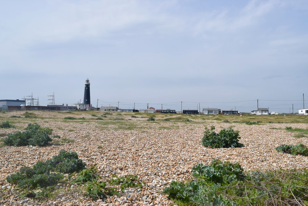 Design and Dungeness - View towards Mini Moderns beach house
