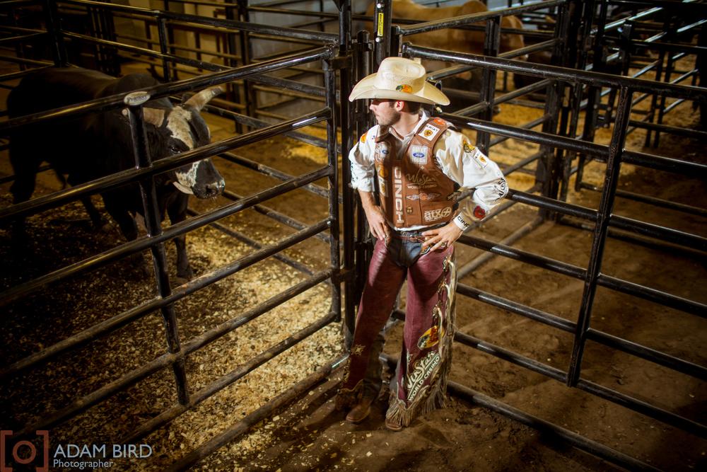 bull_rider_08.JPG