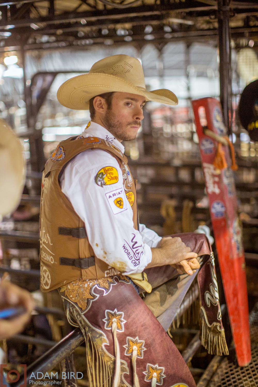 bull_rider_03.JPG