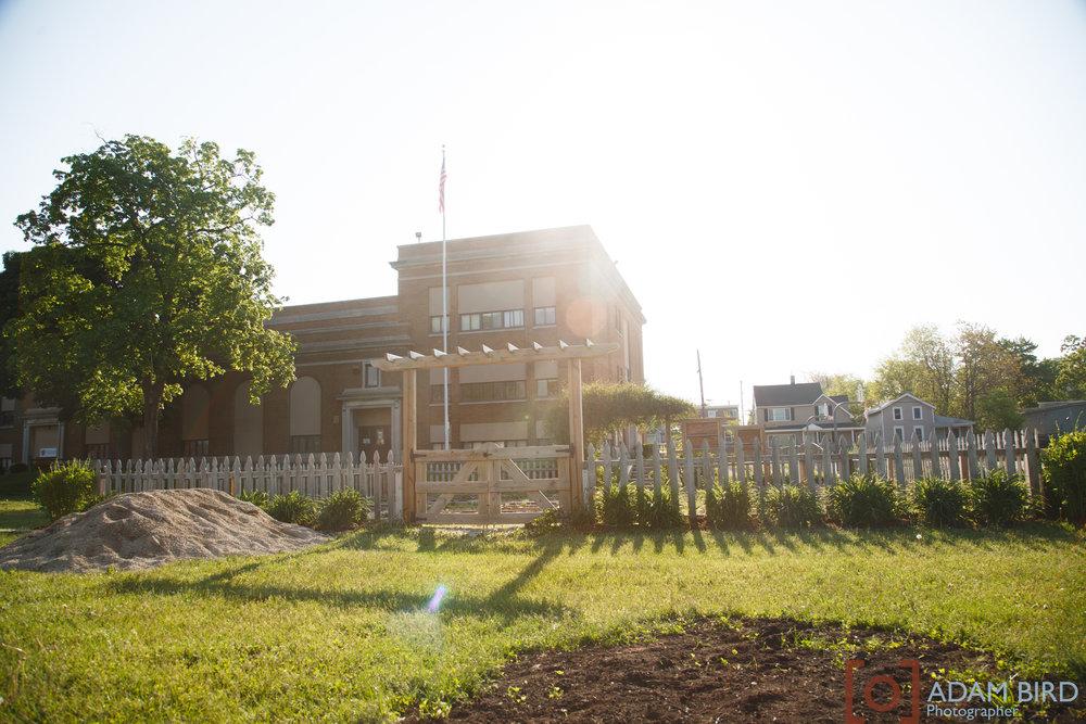 school_garden161.JPG