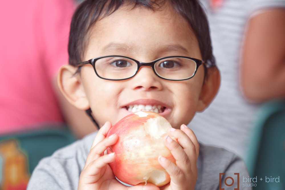 farm_to_table_kids_blog073.JPG