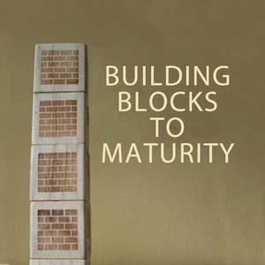 Building-Blocks-To-Maturity-1200.png