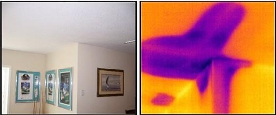 ceiling_wet.jpg
