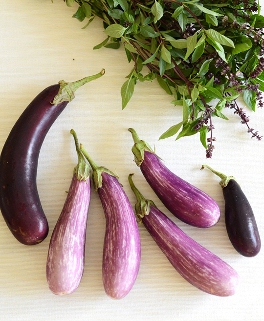 Thai eggplants and Thai basil