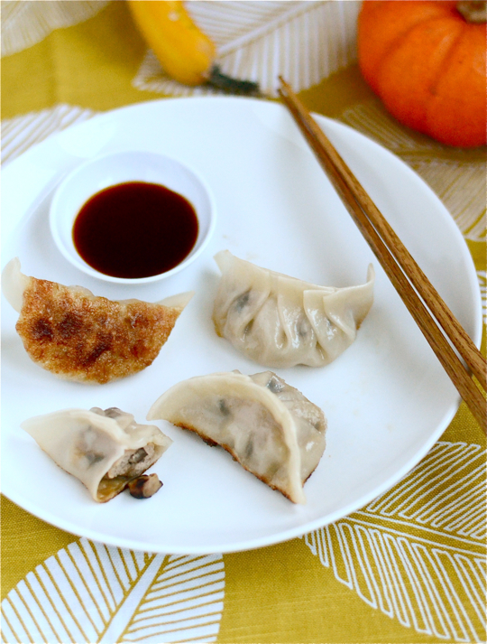 Turkey and Mushroom Dumplings