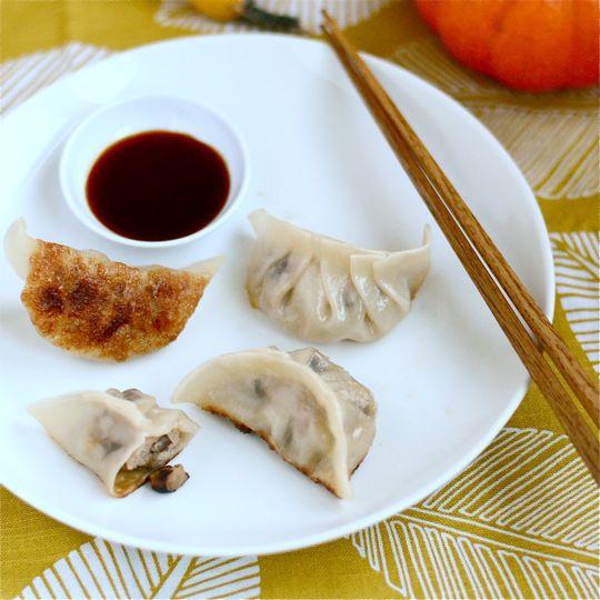 Turkey Dumplings
