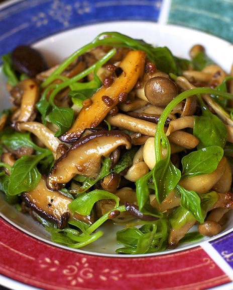 Sichuan wild mushroom saut with new zealand spinach appetite for sichuan wild mushroom saut with new zealand spinach appetite for china forumfinder Gallery