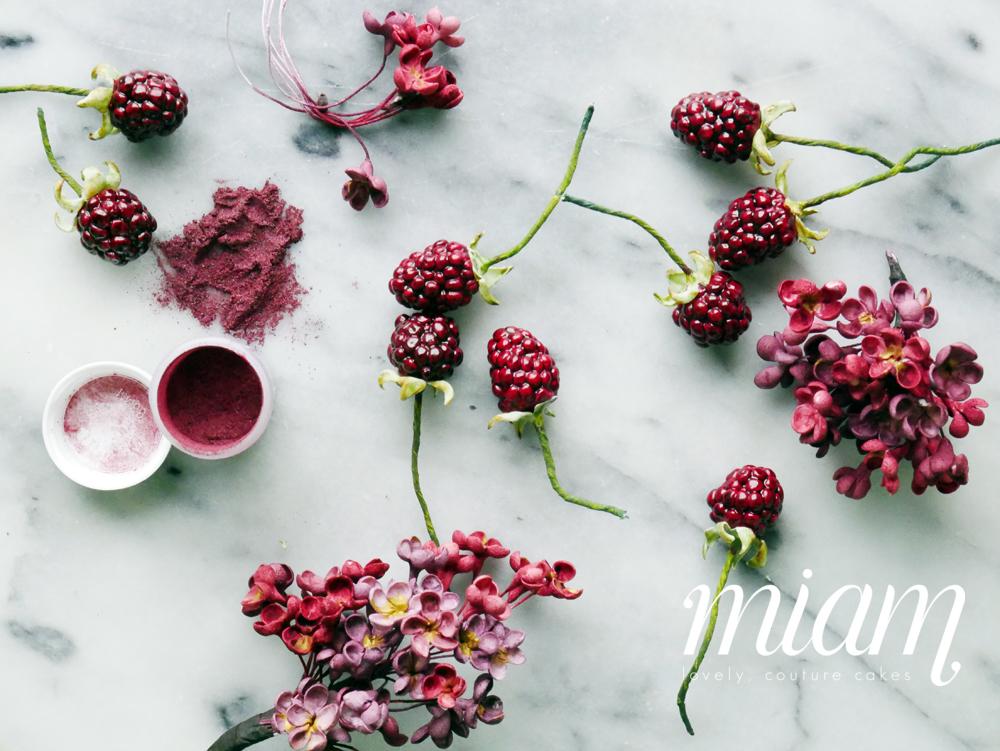 berryclass1000.jpg