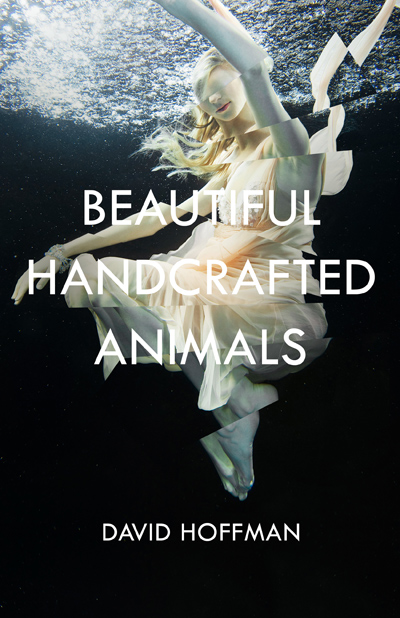 Beautiful Handcrafted Animals - COVER Teaser 2.jpg