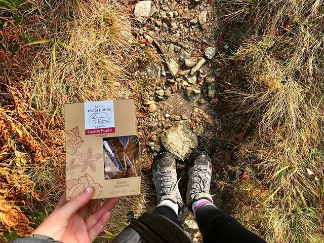 The perfect trail companion 🍁 🍂 Happy Friday! #foliage #hike #hikevermont #stowe #stowevermont