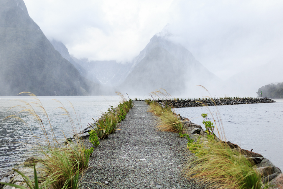 Morning in Milford Sound after a huge tropical thunderstorm...