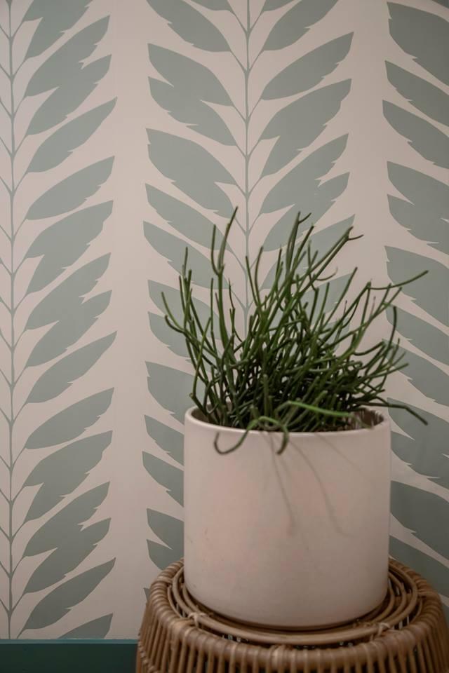 plant glossarie.jpg