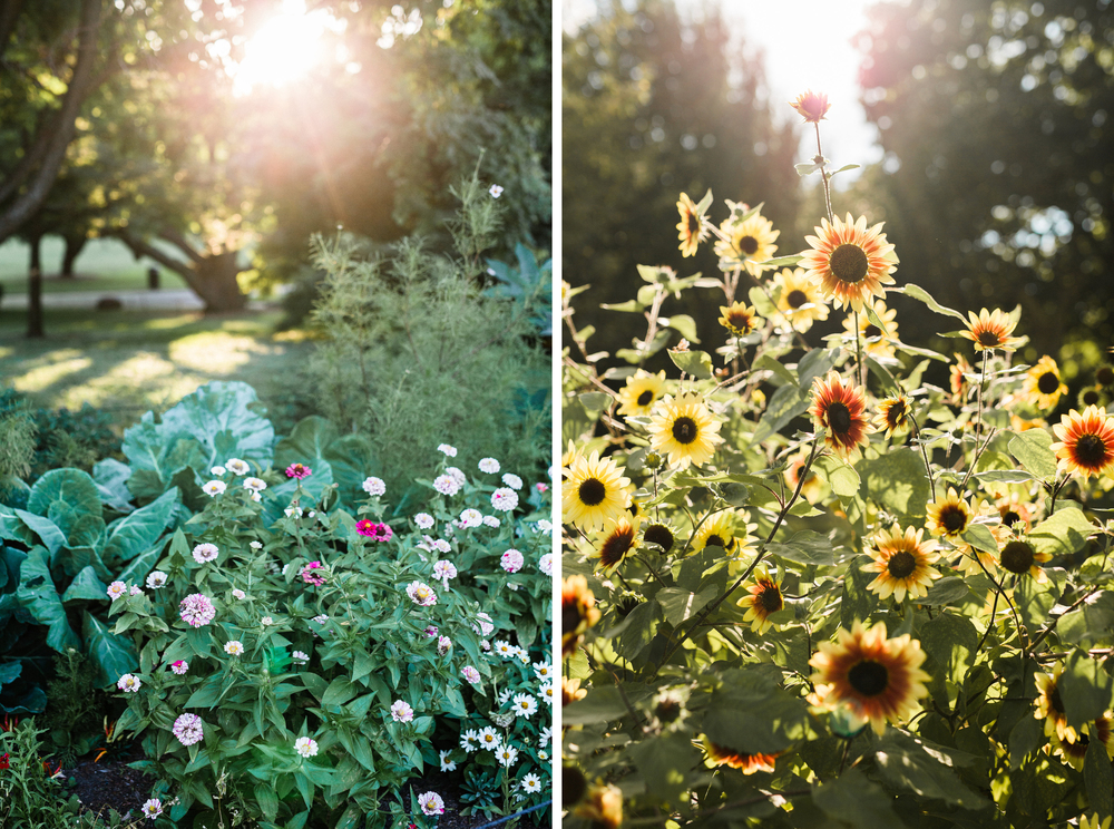 brooklyn-botanic-garden_wedding-photographer-3.jpg