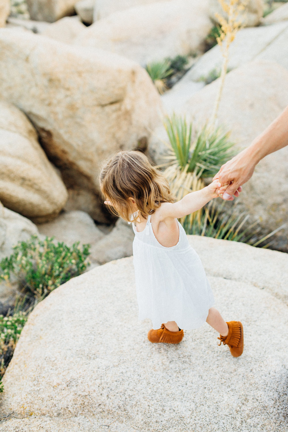 joshua-tree_california_family-session_nicki-sebastian-photography-197.jpg