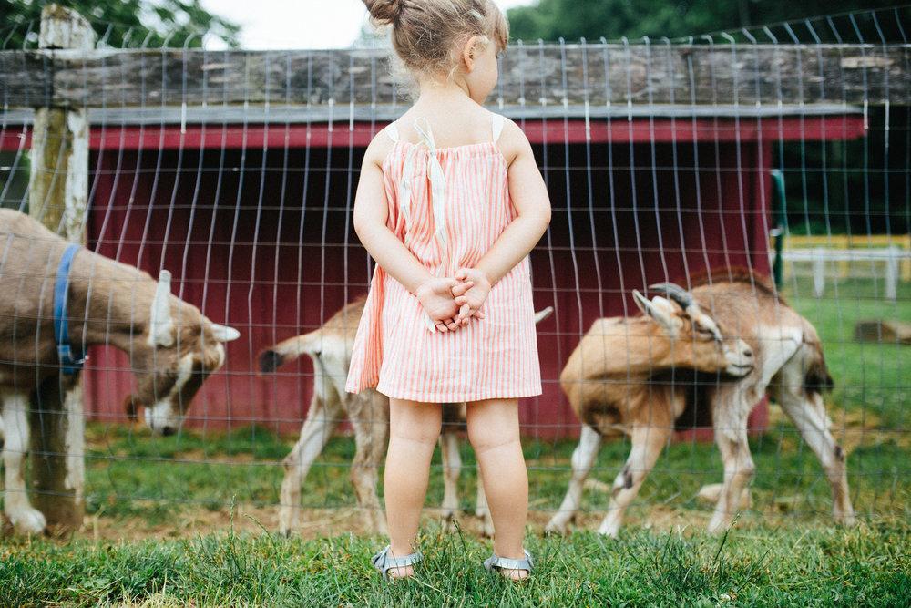 cami_muscoot-farm_westchester_new-york_child-photographer-29.jpg