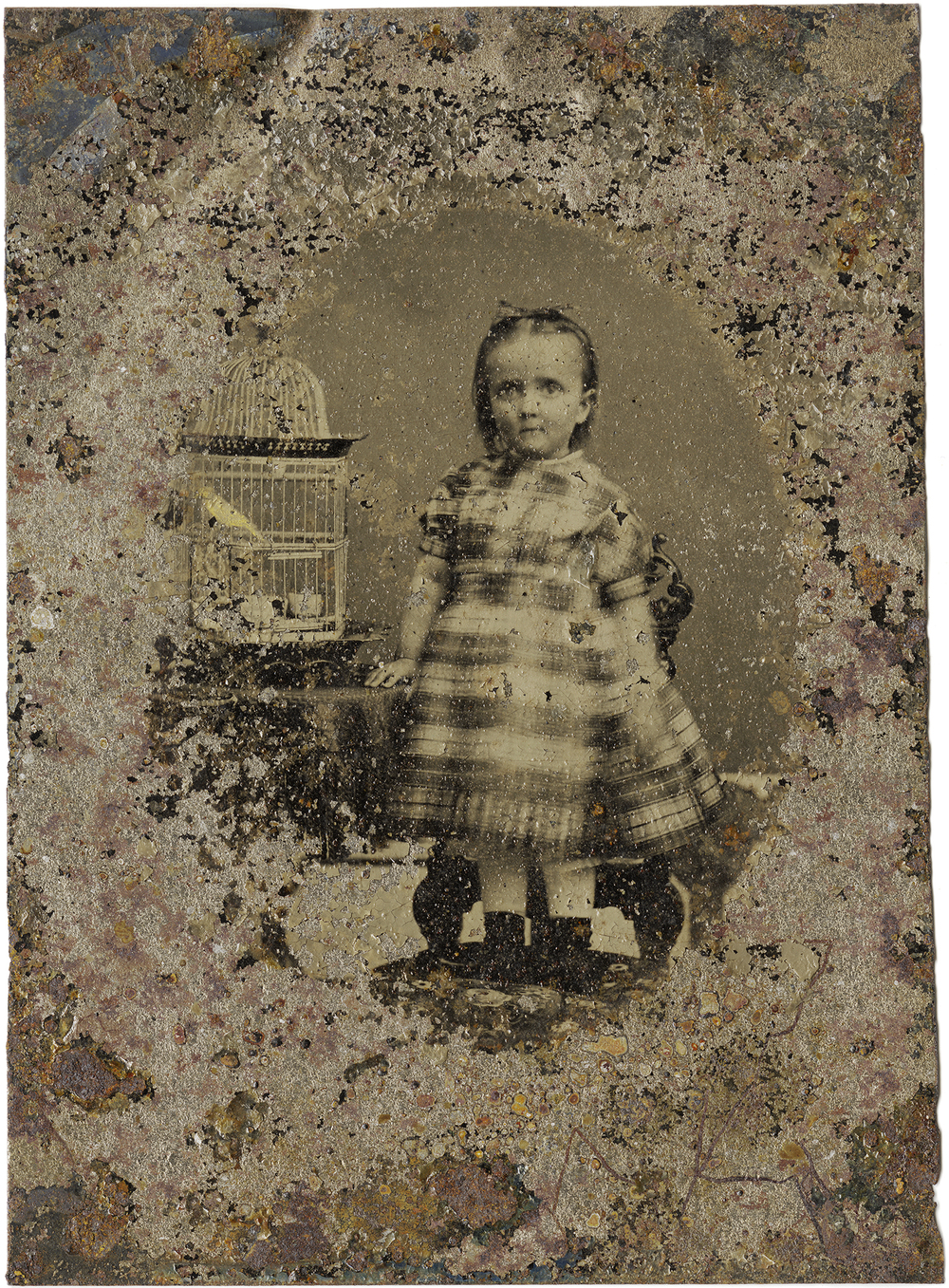 Little Girl with Birdcage, 2011 - LR12123