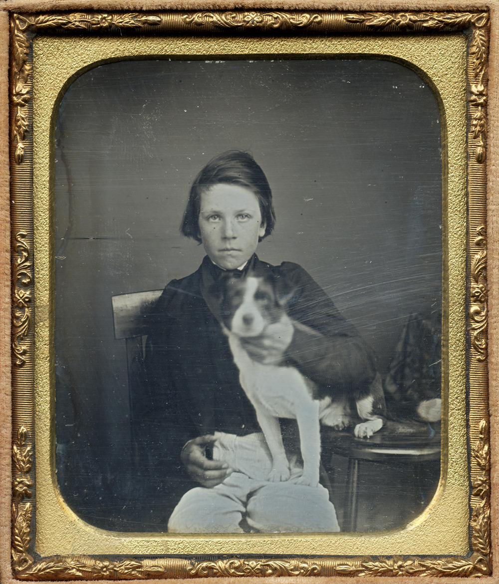 Portrait of a Boy Seated with His Dog