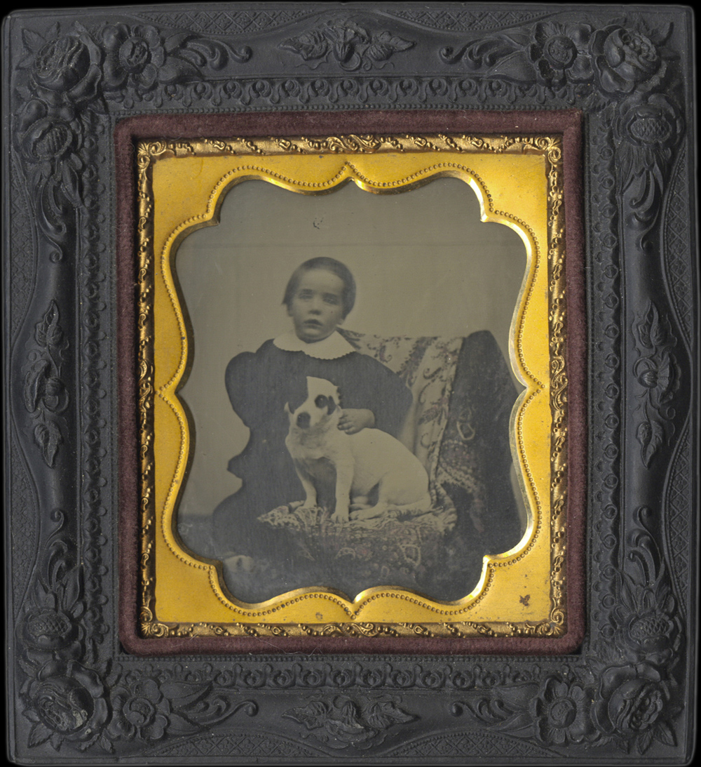 Portrait of a Child and His Black and White Dog