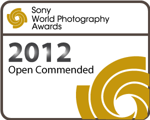 Commended - Sony Awards.jpg