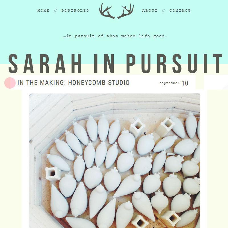 Sarah In Pursuit