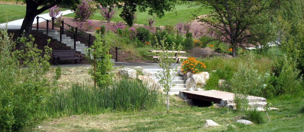 Kottinger Creek Restoration at Kottinger Park, City of Pleasanton