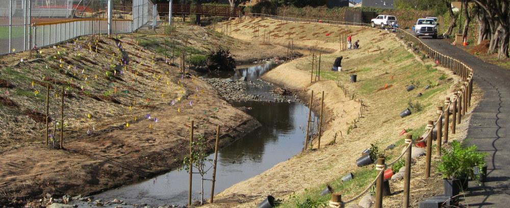 Daylighting Wildcat Creek at Davis Park, City of San Pablo