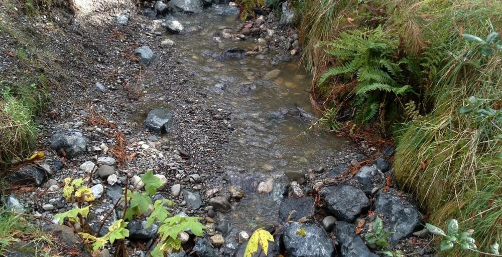 Wildcat Creek at Tilden Park Regional Golf Course, East Bay Regional Park District