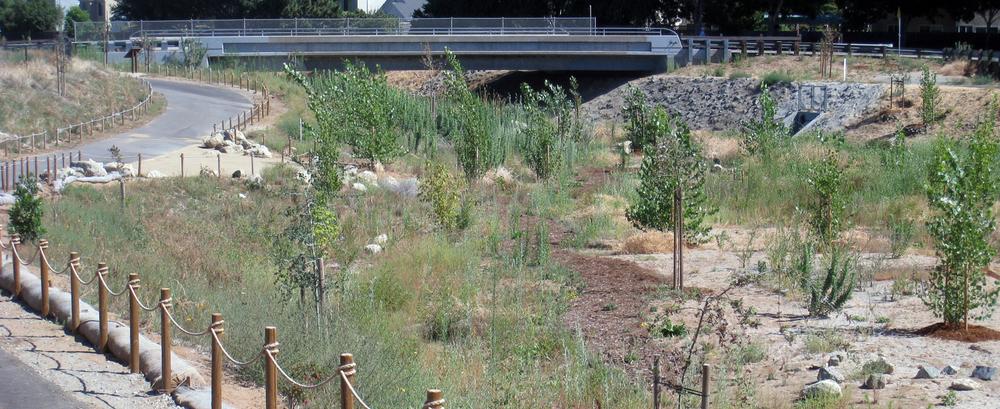 Marsh Creek Restoration, City of Oakley