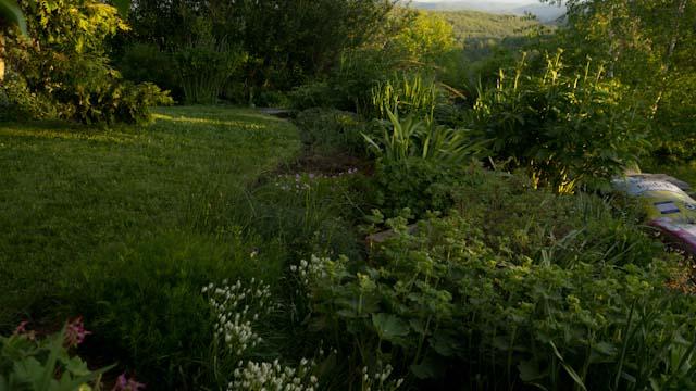 Twilight Garden.jpg