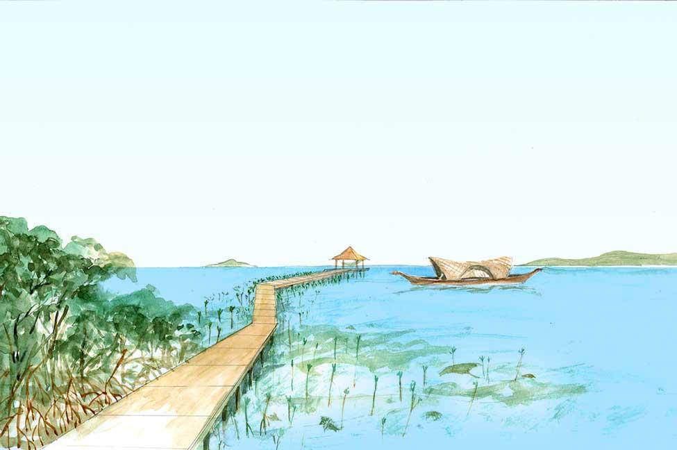 mangrove-walk.jpg
