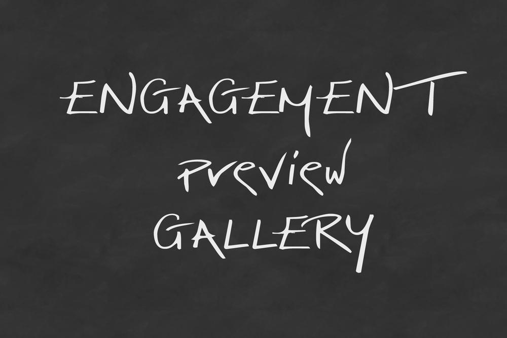 EngagementPreviewGallery.jpg