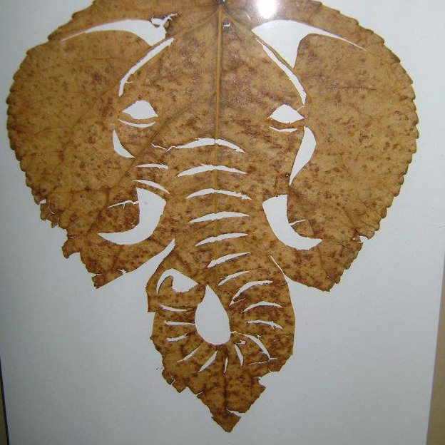 "My very first leaf carving, ""The Matriarch"" (October 2007)"