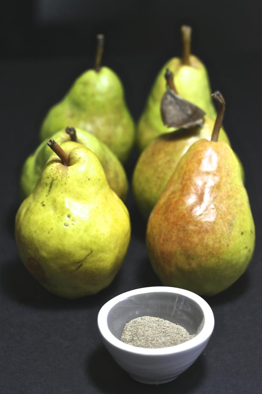 pear4.jpg