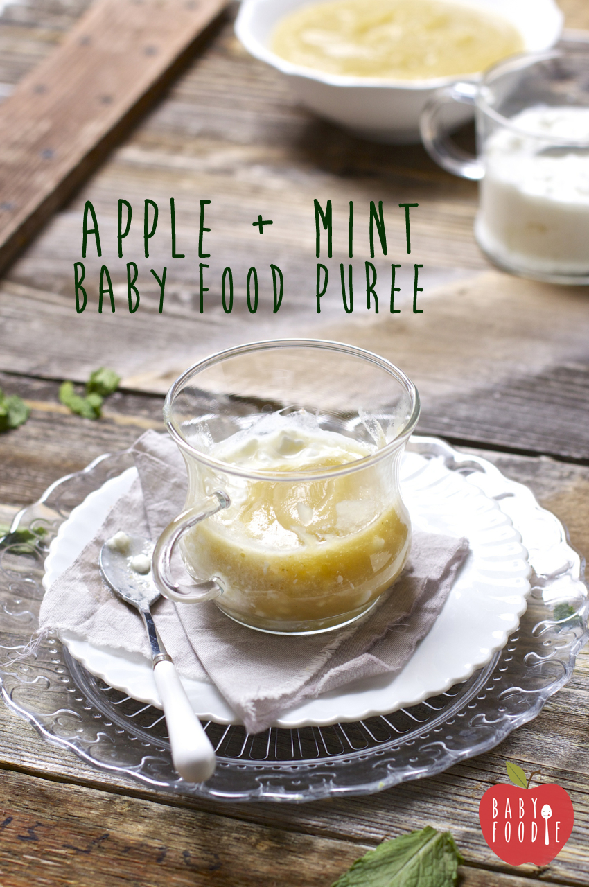 Apple Mint Cottage Cheese Puree Baby Foode