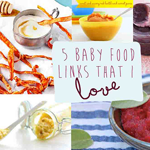 5 Baby Food Links that I Love