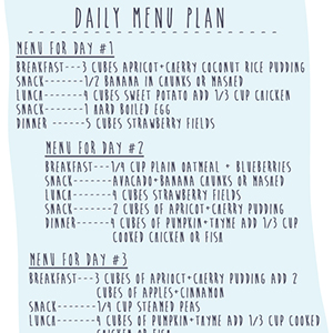 Menu Plan for 9-12 Month Olds