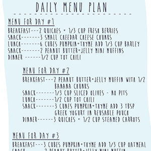 Menu Plan for 12+ Months