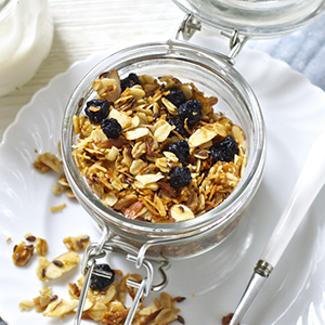 Ellie's Favorite Granola - Dried Blueberry + Coconut + Almond