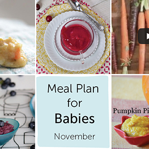 Meal Plan for Babies - November