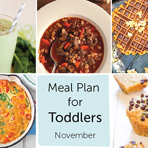 Meal Plan for Toddlers - November