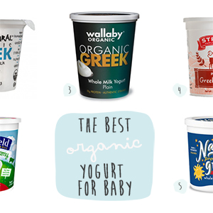 Best Organic Yogurt for Baby